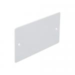 2 gang flush blank plate