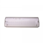Dual purpose emergency light IP65